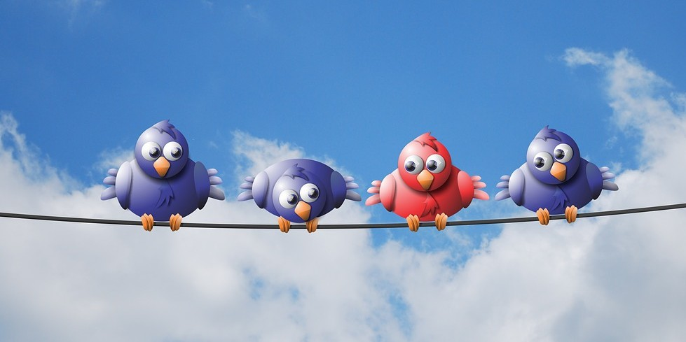 Social Media Marketing - Stand Out